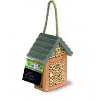 TOM CHAMBERS HAPPY BEE BOX