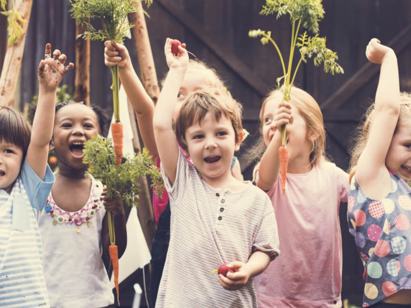 How to Get Children Excited About Gardening